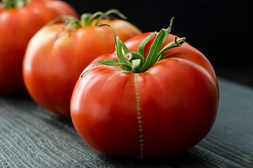 Fresh Tomatoes On Hilton Head